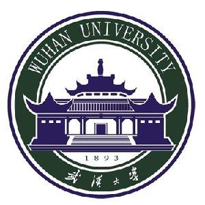 武汉大学项目管理领域